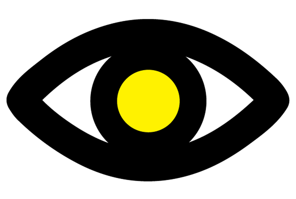 Macular Society eye logo
