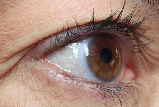 Close up brown eye looking left