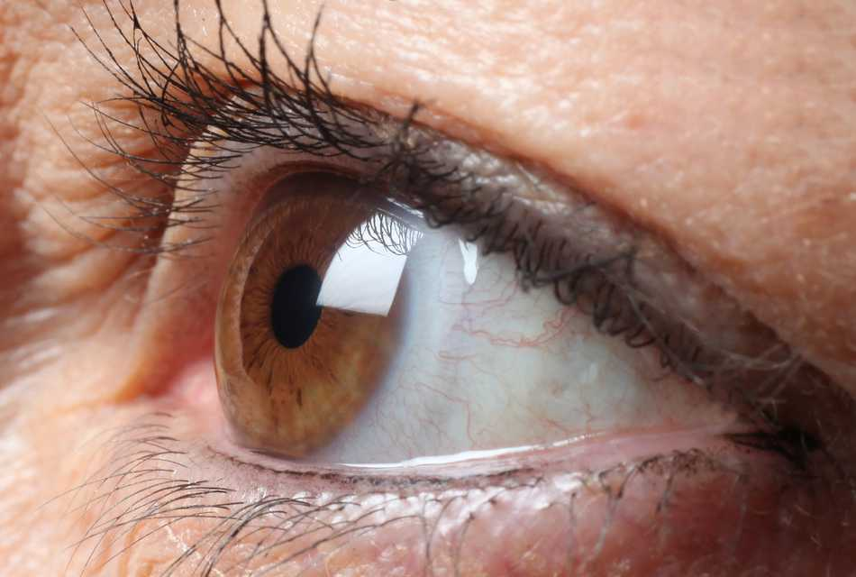 Close up brown eye looking right