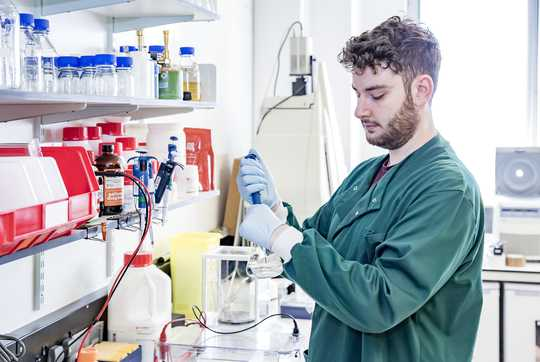 Male researcher with test tube